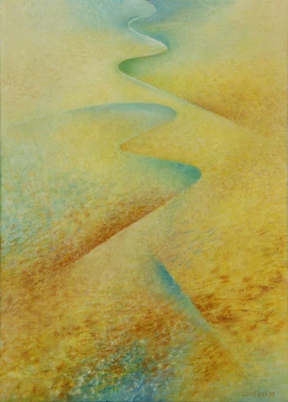 36. Rozkvetlá poušť